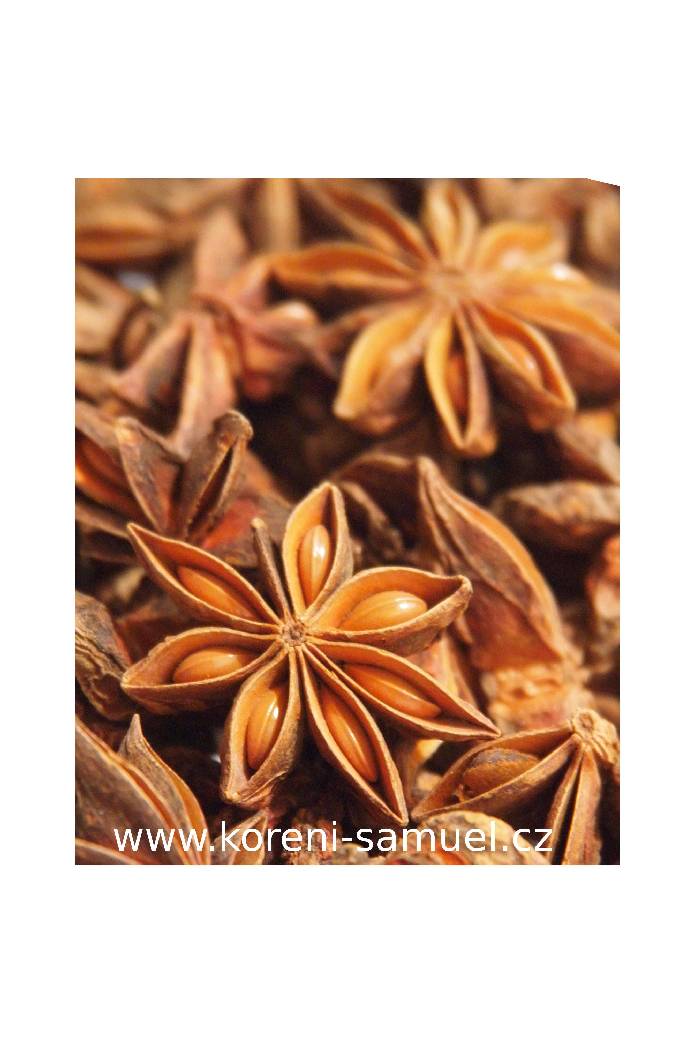 Bio badyán hvězdice mletá